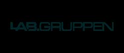 logo_labgruppen
